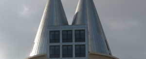 NedZink Roofing